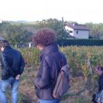 Kris, Lors de ces voyages dans les vignobles français, Beaujolais, Châteauneuf-du-Pape, Languedoc, Portugal, Espagne, Piémont, Toscane, Champagne, Bourgogne