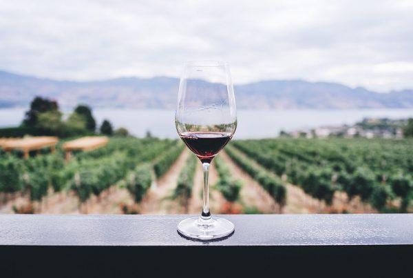 la roots des vins les nenettes du vin
